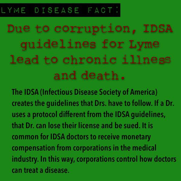 "On 5/1/08 Attorney General Blumenthal of Connecticut's antitrust investigation into the development of the 2006 IDSA Lyme Disease Guidelines came to an end. The investigation revealed that the guideline process was indeed flawed, and 9 out of 14 of the IDSA panel members had conflicts of interest (investments in Lyme disease Vaccines, Diagnostic testing, Grants, etc.). Findings include the following: - The IDSA failed to conduct a conflicts of interest review for any of the panelists prior to their appointment to the 2006 Lyme disease guideline panel; - Subsequent disclosures demonstrate that several of the 2006 Lyme disease panelists had conflicts of interest; - The IDSA failed to follow its own procedures for appointing the 2006 panel chairman and members, enabling the chairman, who held a bias regarding the existence of chronic Lyme, to handpick a likeminded panel without scrutiny by or formal approval of the IDSA's oversight committee; - The IDSA's 2000 and 2006 Lyme disease panels refused to accept or meaningfully consider information regarding the existence of chronic Lyme disease, once removing a panelist from the 2000 panel who dissented from the group's position on chronic Lyme disease to achieve ""consensus""; - The IDSA blocked appointment of scientists and physicians with divergent views on chronic Lyme who sought to serve on the 2006 guidelines panel by informing them that the panel was fully staffed, even though it was later expanded; - The IDSA portrayed another medical association's Lyme disease guidelines as corroborating its own when it knew that the two panels shared several authors, including the chairmen of both groups, and were working on guidelines at the same time. In allowing its panelists to serve on both groups at the same time, IDSA violated its own conflicts of interest policy."